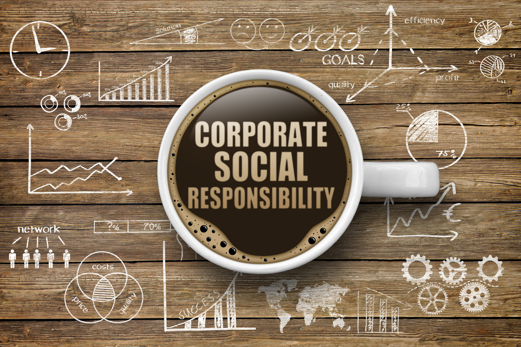 CSR Programs: What Should You Know And What To Choose?